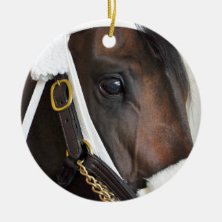 Ollysilverexpress Ceramic Ornament