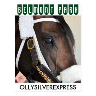 Ollysilverexpress Postcard