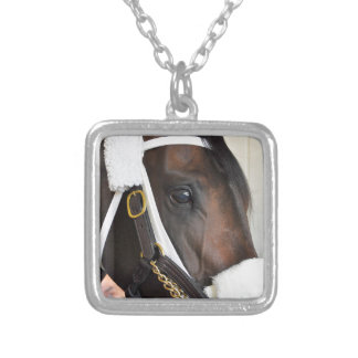 Ollysilverexpress Silver Plated Necklace