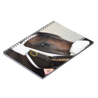 Ollysilverexpress Spiral Notebook