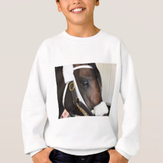 Ollysilverexpress Sweatshirt