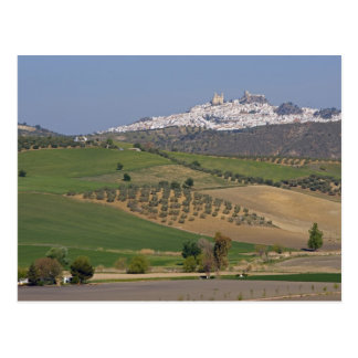 Olvera, Andalusia, Spain Postcard