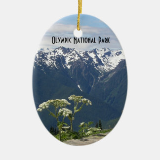 Olympic National Park Photo Single-Sided Ornament