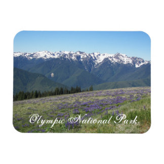Olympic National Park Travel Photo Magnet