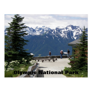Olympic National Park Travel Photo Postcard