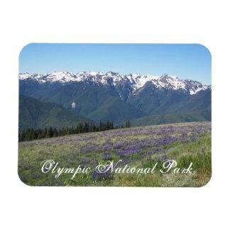 Olympic National Park Travel Photo Rectangular Photo Magnet