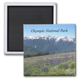 Olympic National Park Travel Photo Square Magnet