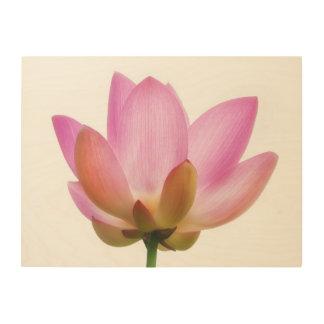 Om Lotus Pink Flower Petals Wood Print