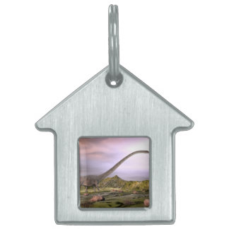 Omeisaurus walking in the desert by sunset pet tag