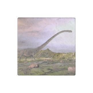 Omeisaurus walking in the desert by sunset stone magnets