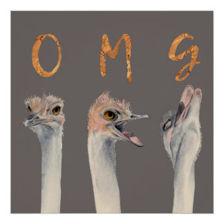 OMG Ostriches Poster