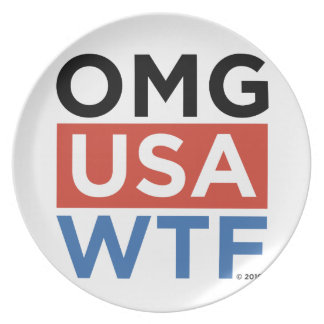 OMG USA WTF PARTY PLATE