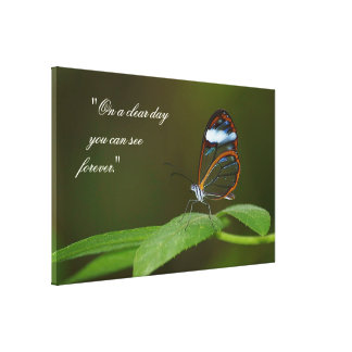 """On A Clear Day"" Glasswing Butterfly Canvas Print"