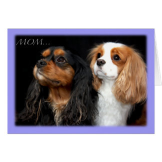 On Mothers Day Two Cavalier King Charles Spaniel Card