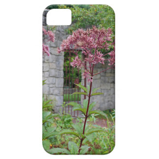 On My Doorstep iPhone 5 Cover