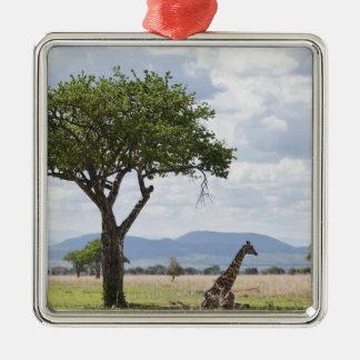 On safari in Mikumi National Park in Tanzania, Metal Ornament