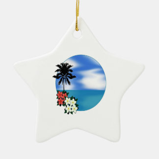 ON THE DAILY CERAMIC STAR ORNAMENT