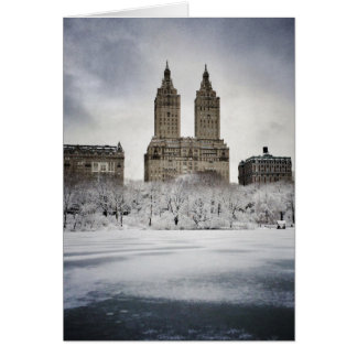 On The Edge Of Frozen In Central Park Card