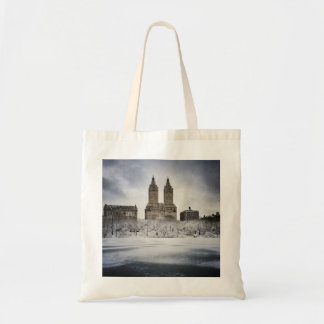 On The Edge Of Frozen In Central Park Tote Bag