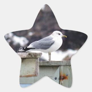 On The Pier Star Sticker