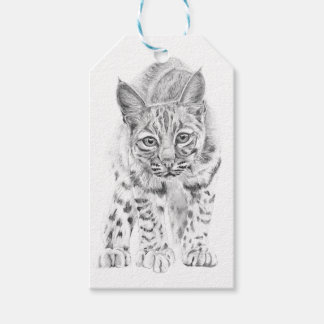 On the Prowl A Young Bobcat Gift Tags