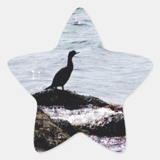 On The Watch Star Sticker