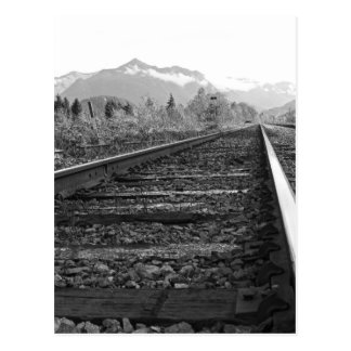 On Track - Black and White traintracks photo Postcard