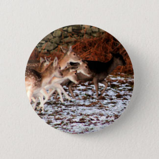On your marks (deer) 2 inch round button