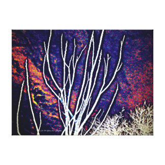 ONCE WAS A FOREST 3 CANVAS PRINT