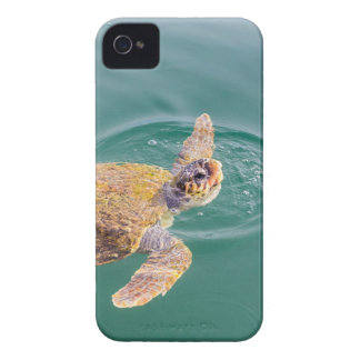 One big swimming sea turtle Caretta iPhone 4 Cover