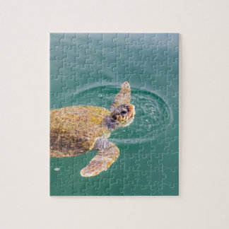 One big swimming sea turtle Caretta Jigsaw Puzzle