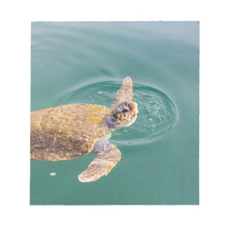 One big swimming sea turtle Caretta Notepad