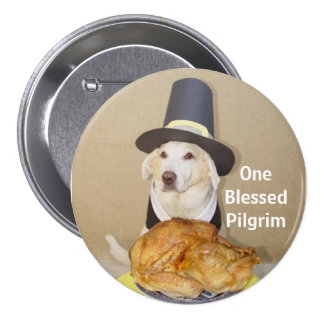 One Blessed Pilgrim Button