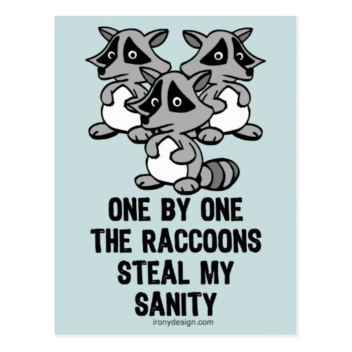 One By One The Raccoons Post Cards