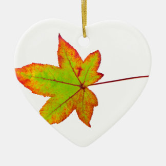 One colorful maple leaf in autumn on white ceramic ornament
