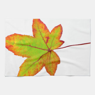 One colorful maple leaf in autumn on white kitchen towel