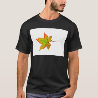 One colorful maple leaf in autumn on white T-Shirt
