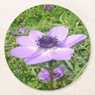 One Delicate Pale Lilac Anemone  Wild Flower Round Paper Coaster
