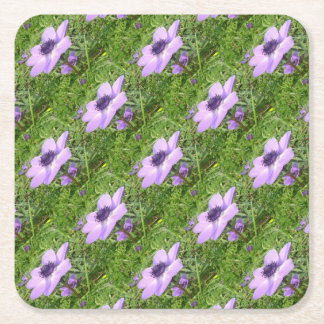 One Delicate Pale Lilac Anemone  Wild Flower Square Paper Coaster