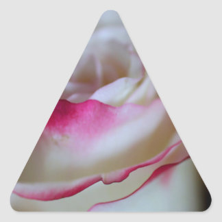 One Desire Triangle Sticker