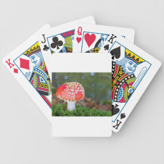 One fly agaric with green moss in fall season bicycle playing cards