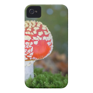 One fly agaric with green moss in fall season Case-Mate iPhone 4 cases