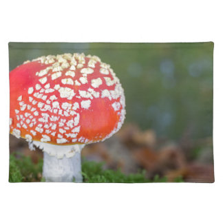 One fly agaric with green moss in fall season placemats