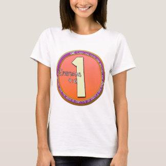 ONE GOD Ephesians 4:6 T-Shirt