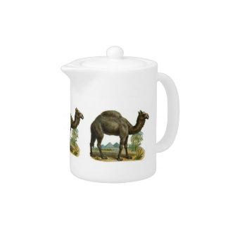 One Hump Camel Teapot