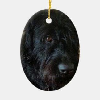 One Mischievous Dog Ceramic Oval Ornament
