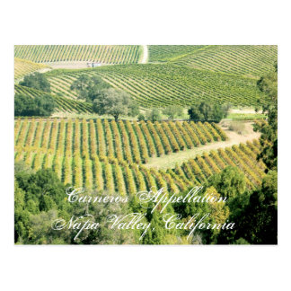 One of Napa Valley's many appellations or regions Postcard