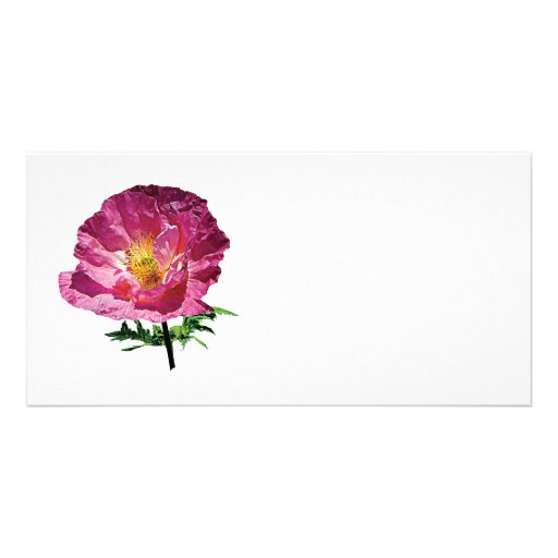 One Pink Poppy Customized Photo Card