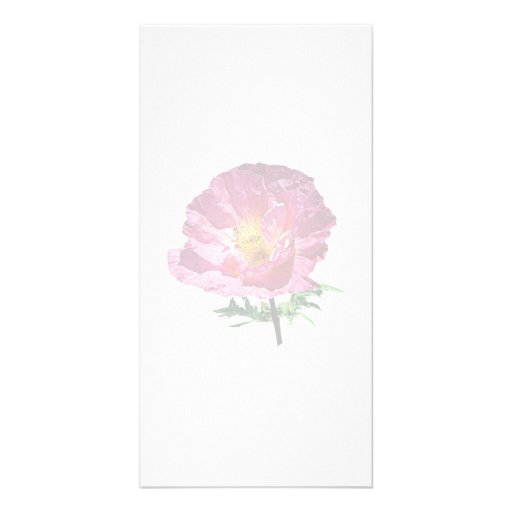 One Pink Poppy Personalized Photo Card