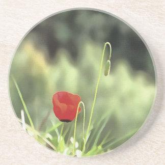 One Poppy Coaster